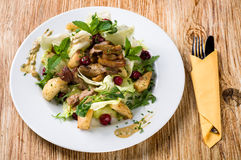 Salade de mélange avec le canard Photographie stock libre de droits
