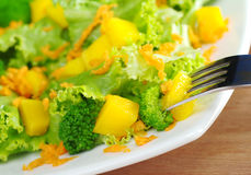 Salade de Mangue-Broccoli-Raccord en caoutchouc Image stock