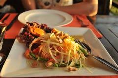 Salade de mangue de poulet Photographie stock libre de droits