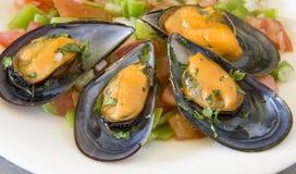 Salade de moules de Vinaigrette photo libre de droits