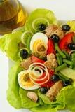 Salade de Nicoise Image libre de droits