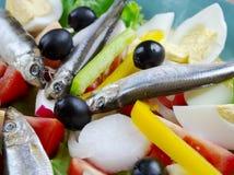 Salade de Nicoise avec des anchois Photographie stock