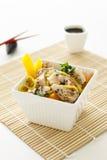 Salade de nouille de poulet de sésame image libre de droits