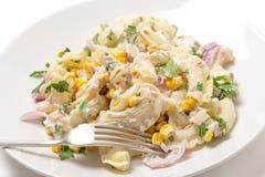 Salade de pâtes de thon avec la fourchette Image libre de droits