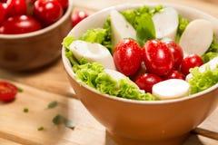 Salade de Palmetto Photographie stock