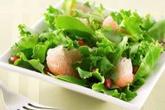 Salade de pamplemousse et de grenade Photographie stock libre de droits