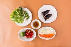 Salade de papaye - insecte d'eau géante d'indicus de Lethocerus photo stock
