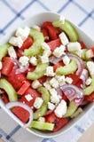 Salade de pastèque Photographie stock libre de droits