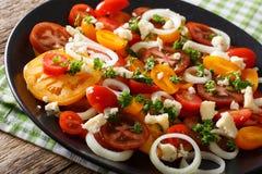 Salade de plan rapproché coloré de tomates, d'oignon et de fromage bleu Hori Photos libres de droits