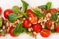 Salade de plan rapproché des légumes frais colorés Photo stock