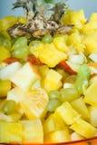 Salade de plaque Images stock