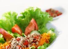 Salade de poissons Image stock