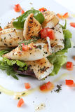 Salade de poissons image libre de droits