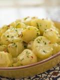 salade de pomme de terre de coriandre de /poivron d'allioli Images stock
