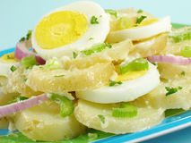 Salade de pomme de terre posée Photos libres de droits
