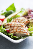 Salade de poulet Photo stock