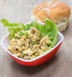 Salade de poulet au curry image stock