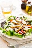Salade de poulet avec la pomme Photographie stock