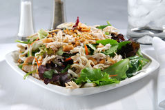 Salade de poulet chinoise Image stock