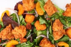 Salade de poulet croustillante images stock
