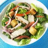 Salade de poulet grillée Photos stock
