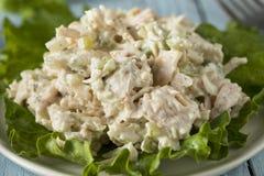 Salade de poulet saine faite maison Photos libres de droits