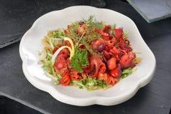 Salade de poulpe image libre de droits