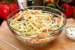 Salade de pousse photographie stock libre de droits