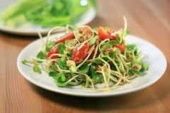Salade de pousse de tournesol avec la source spéciale Photos stock