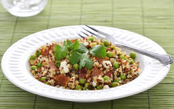 Salade de quinoa Photo libre de droits
