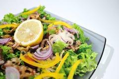 Salade de régime avec des fruits de mer Photos stock