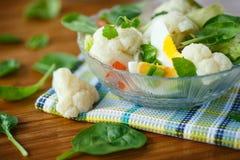 Salade de régime d'été avec le chou-fleur Photos libres de droits