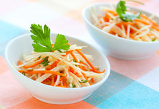 Salade de raccord en caoutchouc et de chou-rave Images stock