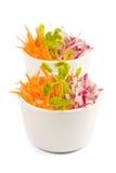 Salade de raccord en caoutchouc et de radis Photographie stock libre de droits
