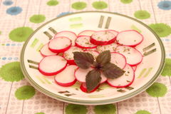 Salade de radis Photographie stock