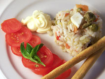 Salade de riz Photographie stock libre de droits