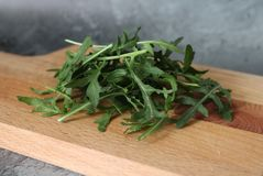 Salade de Ruccola sur le bureau photos stock