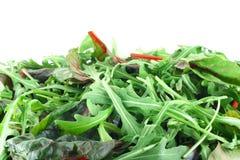 Salade de Rucola et de bette à cardes images stock