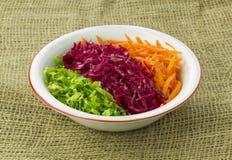 Salade de saison Image libre de droits