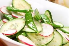 Salade de source Photos libres de droits