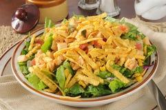 Salade de Taco avec le poulet Image libre de droits
