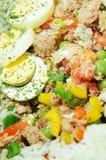 Salade de thon Images stock