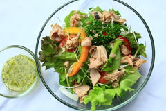 Salade de thon Photo stock