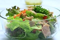 Salade de thon Image stock
