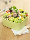 Salade de thon Photos stock