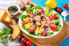 Salade de thon avec des anchois, oeufs, olives noires, tomates, huile, basilic, ail, vinaigre Image libre de droits