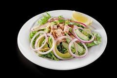 Salade de thon avec l'avocat et l'arugula d'un plat blanc, sur un fond noir Image libre de droits
