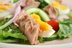 Salade de thon et d'oeufs Photographie stock