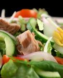 Salade de thon et d'oeufs Image libre de droits