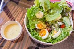 Salade de thon et de légume frais avec l'oeuf à la coque Image libre de droits